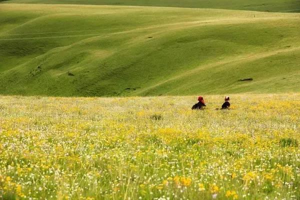 她是四川最迷人的草原!