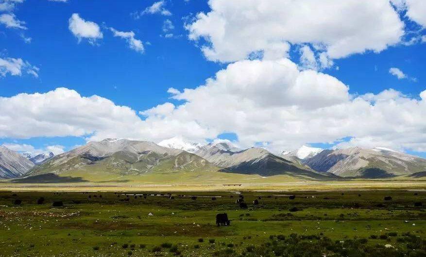 西藏最美的季节已来临,未来半年最佳旅行时间表,你要不要去?